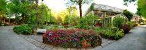 菁芳園 綠生活