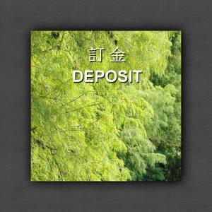 訂金 Deposit